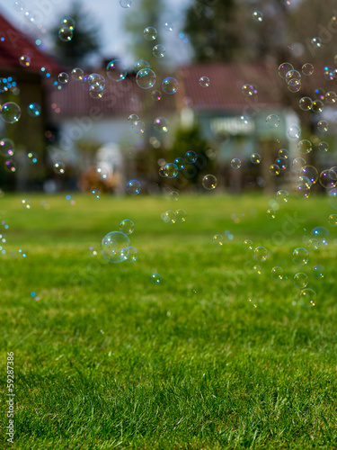 Suburban soap bubbles (more grass)
