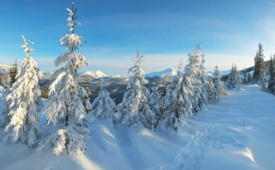 Winter in the mountain valley