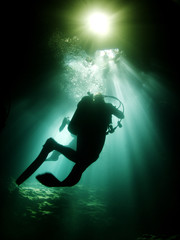 Gorgeous divers' silhouettes at  Devil's Den Springs, Florida