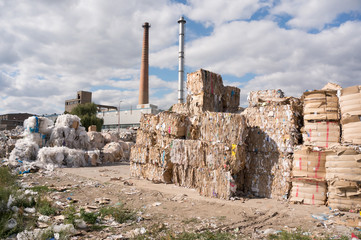 paper recycling factory
