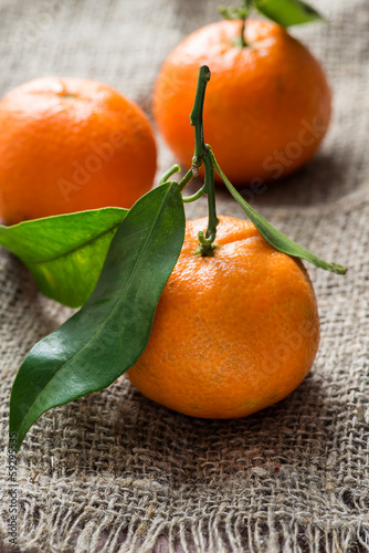 Tangerines with leaves over rustic background