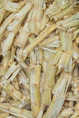 Sugarcane bagasse - the waste of sugar manufacture.