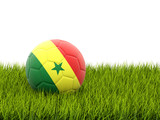 Football with flag of senegal