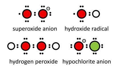 Reactive oxygen species (ROS): superoxide anion, hydroxide ...