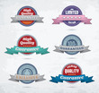 Set of colorful badges with ribbons. EPS10.