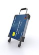 Credit cards and suitcase