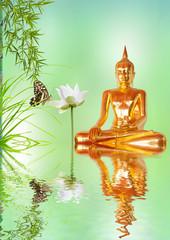 bouddha doré, lotus et bambou