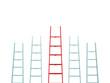 Leadership on Ladder
