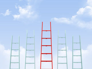 Leadership on Ladder