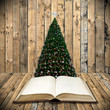 Read bible in christmas day