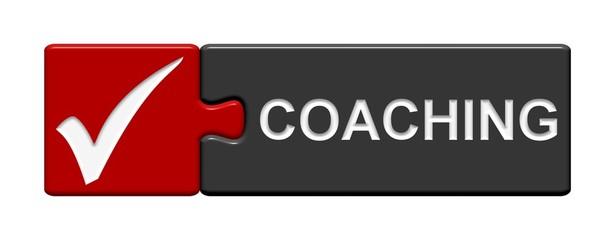 Puzzle-Button rot grau: Coaching