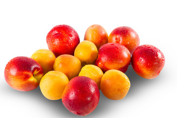 Fresh ripe Nectarines and appricottes