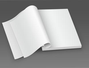 White blank open magazine.