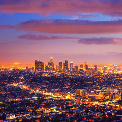 Los Angeles city skyline sunset night