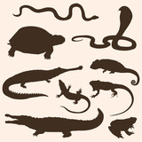 vector set of reptiles and amphibians silhouettes poster