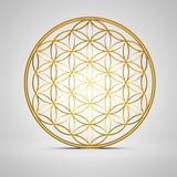 Blume des Lebens - Gold 3D