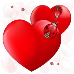 Love heart ladybugs