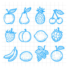 Doodle drawn fruits