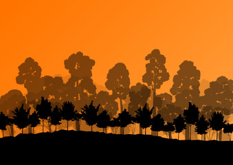 Forest trees silhouettes natural wild landscape detailed illustr