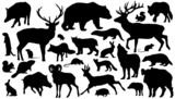 Fototapety forest_animal_silhouettes