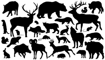 forest_animal_silhouettes