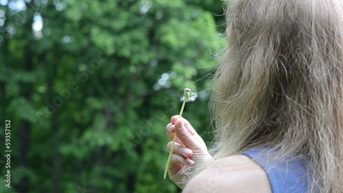 Woman hand hold and blow deflorated dandelion flower seeds