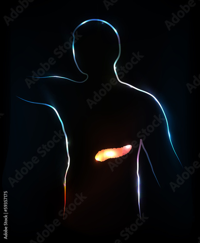 Pancreas. Abstract medical illustration, background.