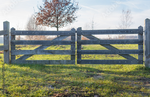 Closed wooden gate in the autumn season