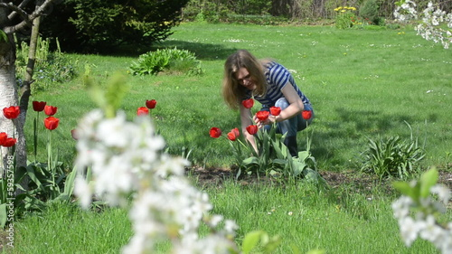 Woman in blue clothes cut red flowers in spring garden