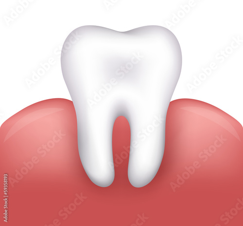 Beautiful healthy tooth and gums. Dental illustration.