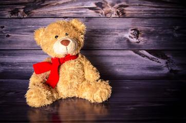 Teddy Teddybär Bär Kuschelbär Kuscheltier