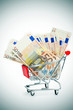 euro banknotes in a shopping cart