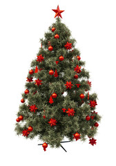 Christmas tree isolated