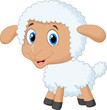 Cute lamb cartoon