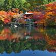 秋の醍醐寺