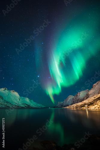 Staande foto Scandinavië Northern Lights in Norway