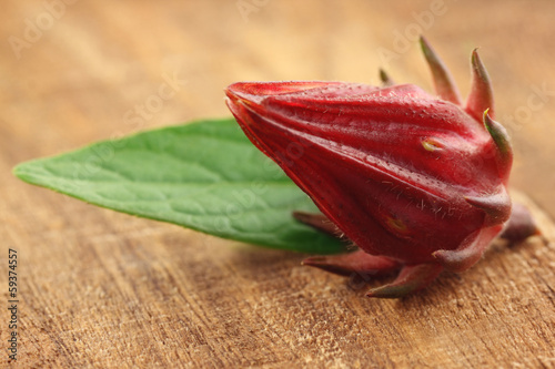 Roselle with green leaf