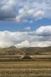 Parco  Nazionale  Alta Murgia:aratura simmetrica. - PUGLIA -