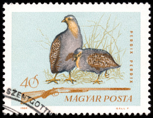 "HUNGARY - CIRCA 1964: A stamp printed in Hungary from the ""Hunti"