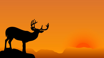 deer silhouette on a sunset