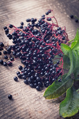 Elderberry on wooden background