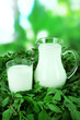Pitcher and glass of milk on grass on nature background