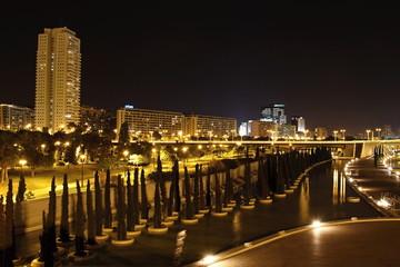 City of Valencia at Night, Spain
