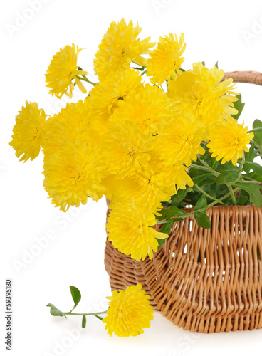 bouquet of yellow chrysanthemums in basket
