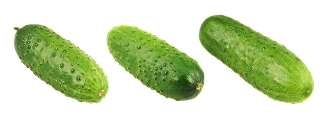 Green fresh cucumbers isolated