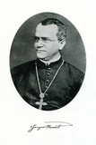 Gregor Mendel,  founder of genetics
