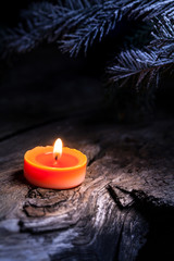 candelina con rametto di pino