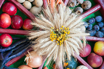 arrangement of different fruits - thanksgiving decoration