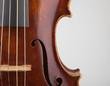 canvas print picture - Dettaglio violino