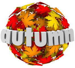 Autum Leaves Changing Colors Sphere Season Change